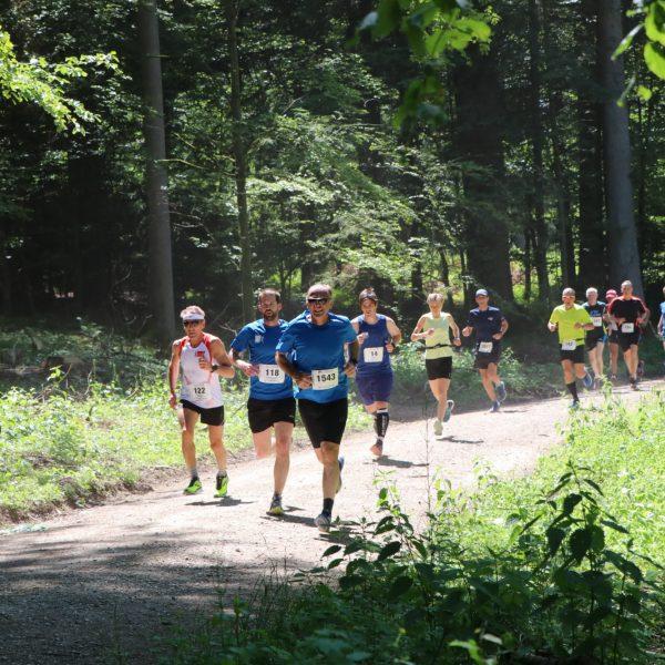 Hauptlauf Pfingstlauf Wohlen Wald